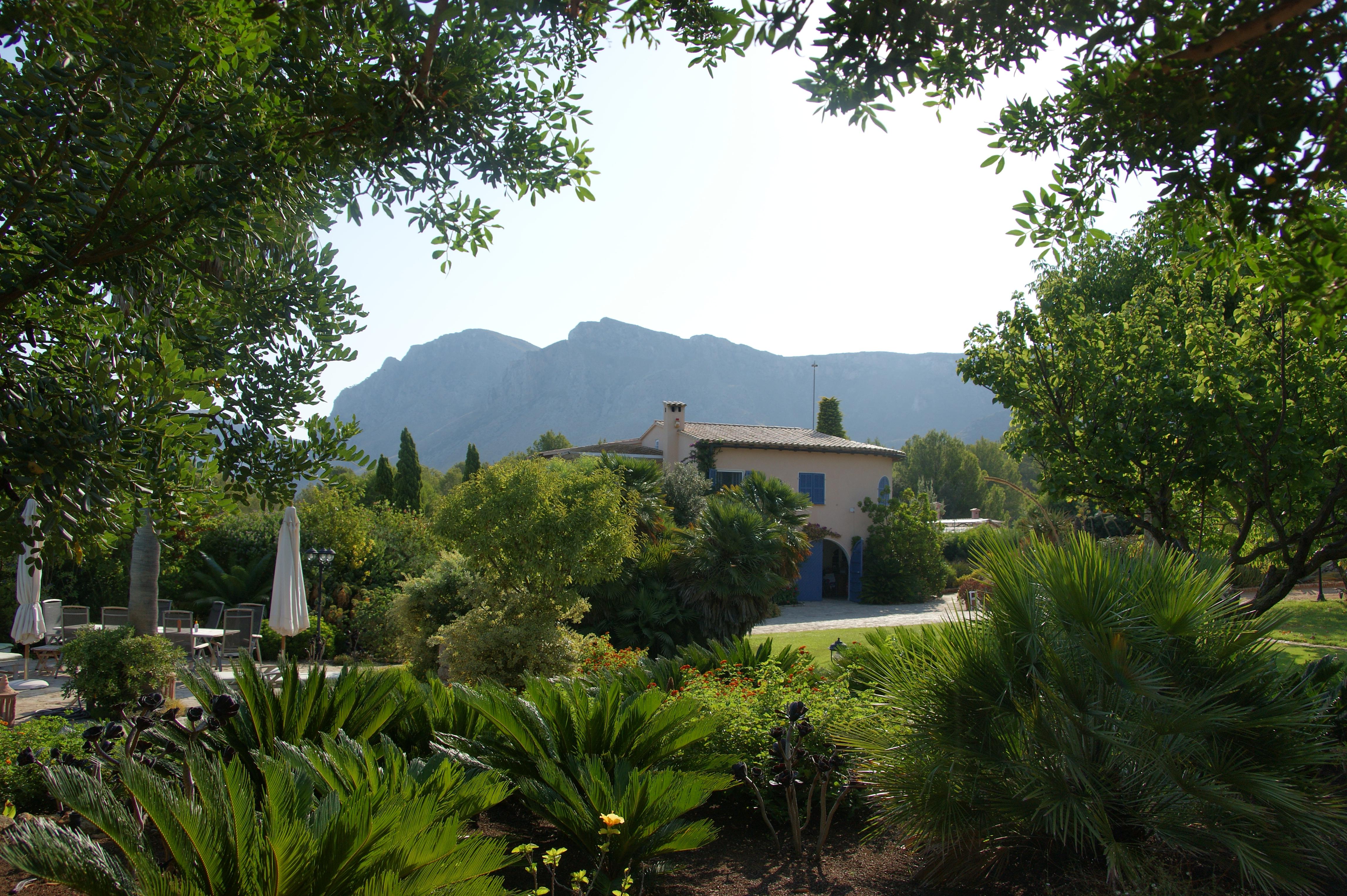 Gartenaussicht / garden view