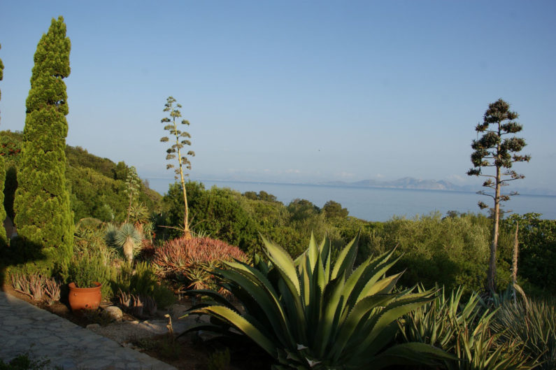 Blick über die Bucht von Alcudia / view over the bay of Alcudia