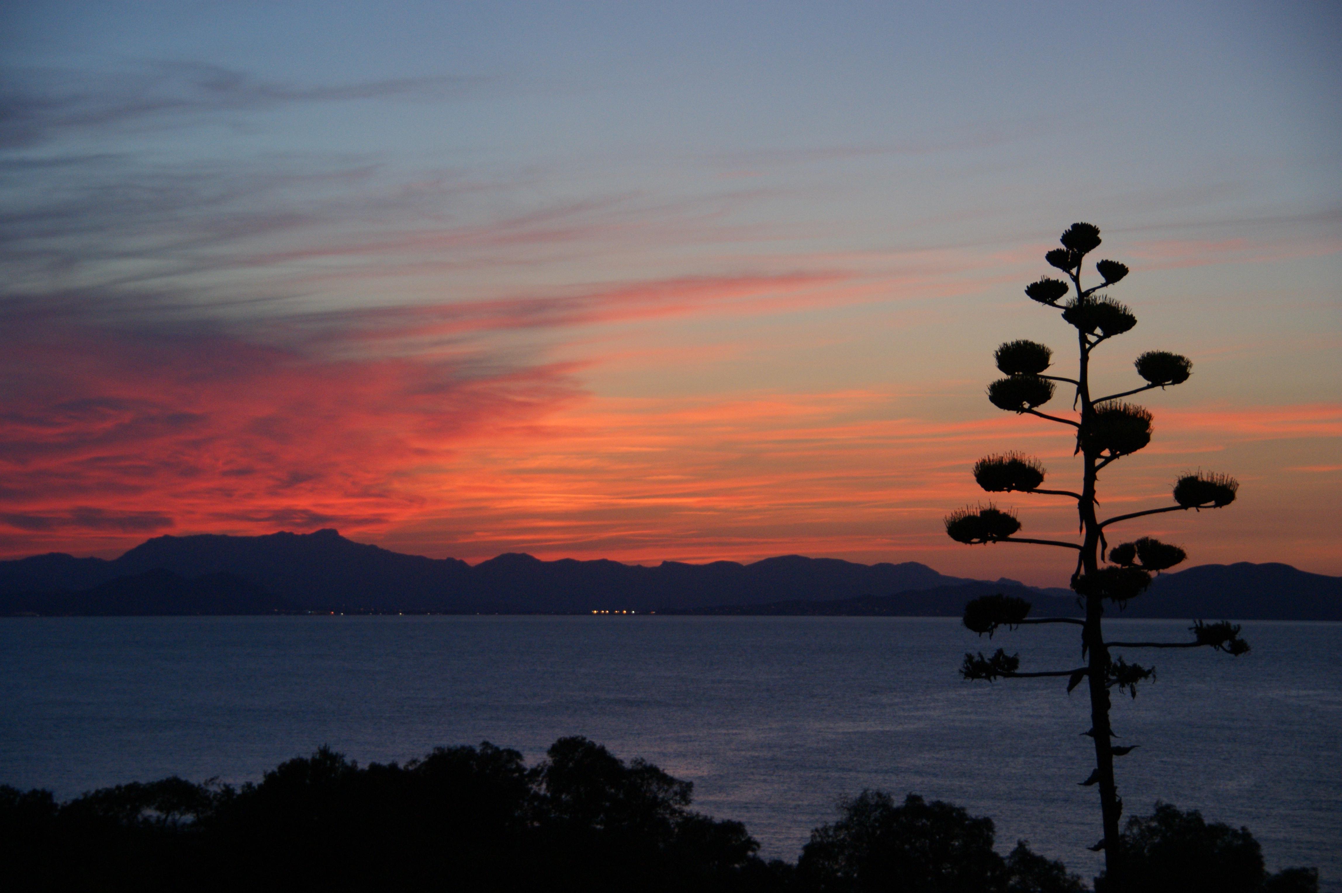 Abendhimmel / evening sky