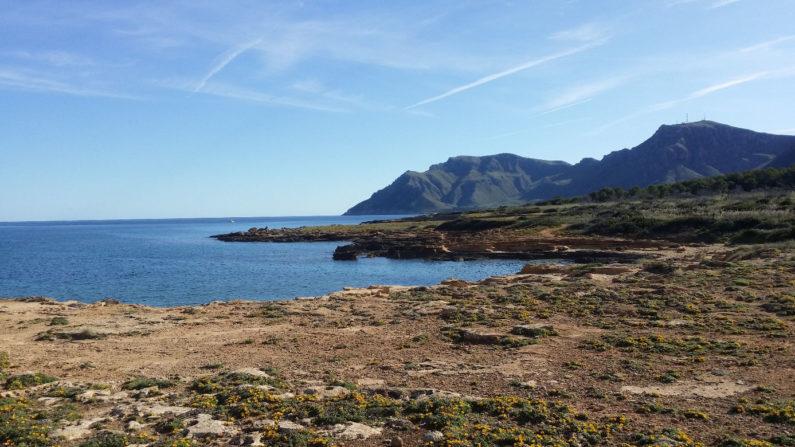 Naturküste / natural coast