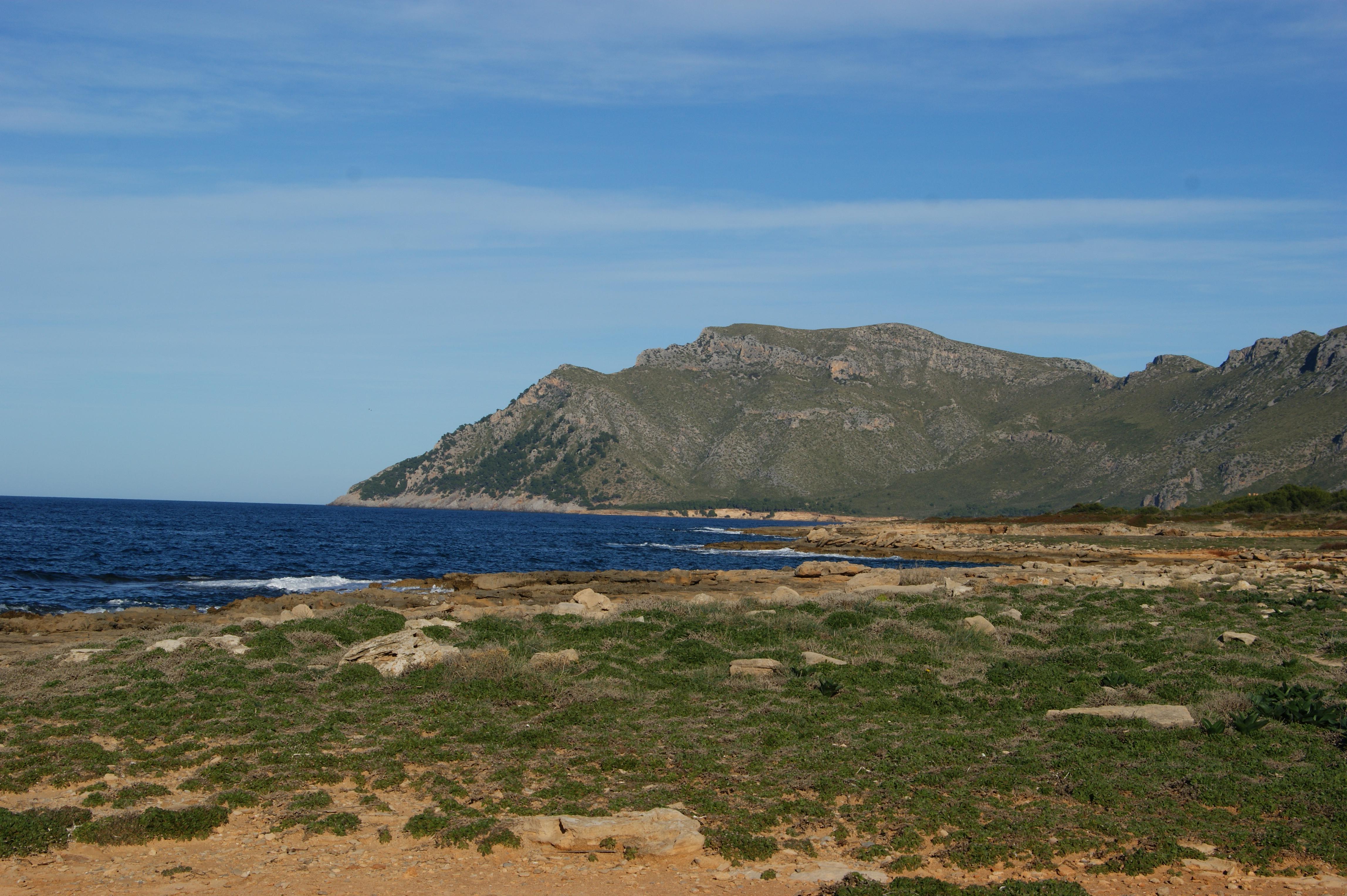 Naturschutzgebiet Es Canons / natural park Es Canons